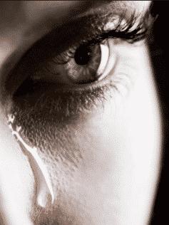 Книги над которыми вы будете плакать